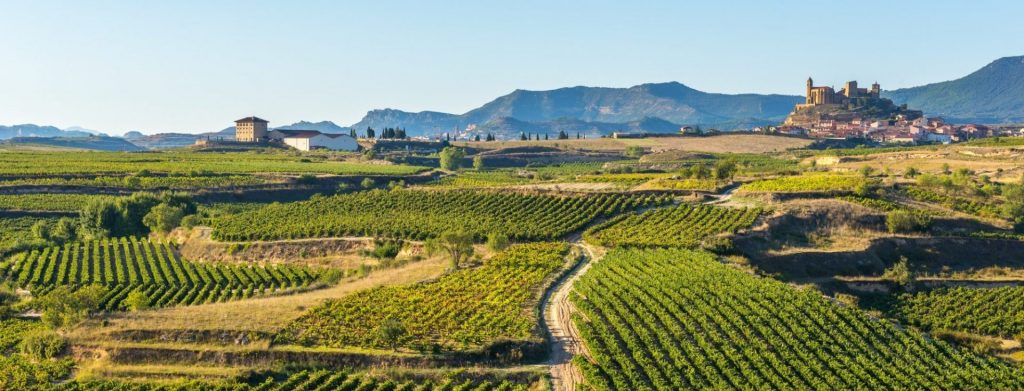 Private tour of Northern Spain
